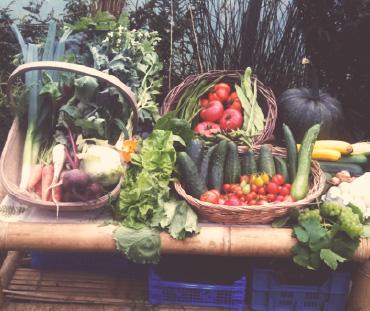 gortbrack organic farm