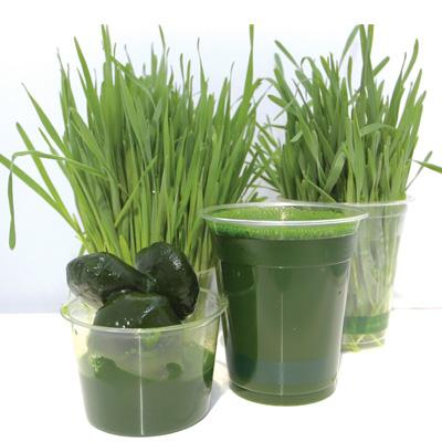 sweetgrass_juice